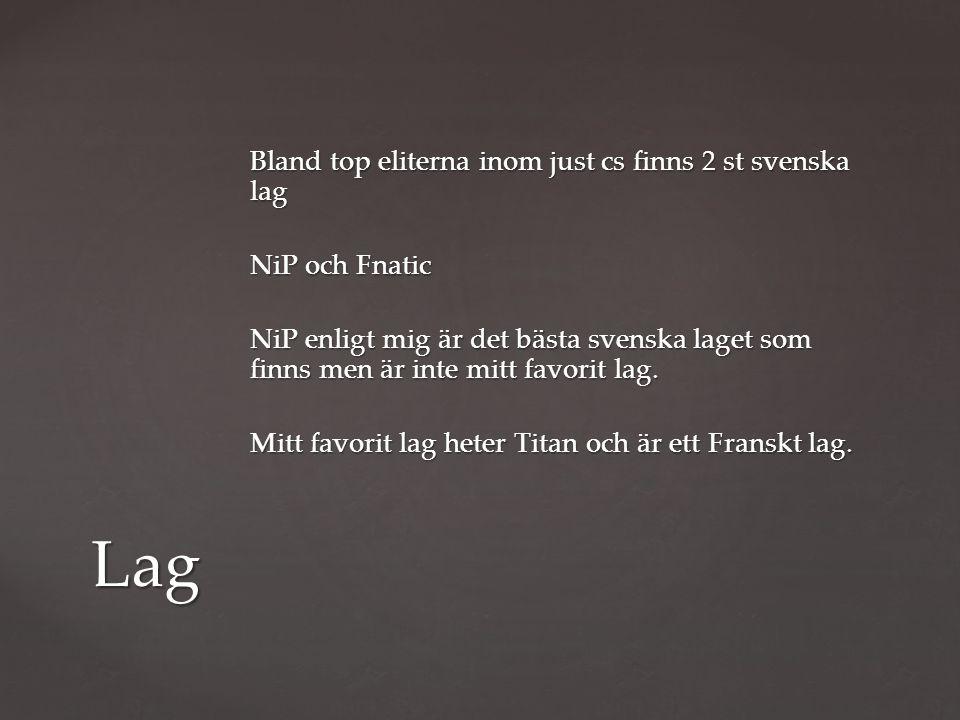 Bland top eliterna inom just cs finns 2 st svenska lag NiP och Fnatic NiP enligt mig är det bästa svenska laget som finns men är inte mitt favorit lag.
