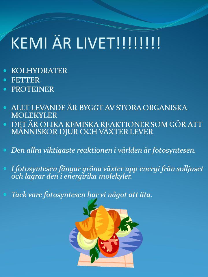 KEMI ÄR LIVET!!!!!!!! KOLHYDRATER FETTER PROTEINER ALLT LEVANDE ÄR BYGGT AV STORA ORGANISKA MOLEKYLER DET ÄR OLIKA KEMISKA REAKTIONER SOM GÖR ATT MÄNN