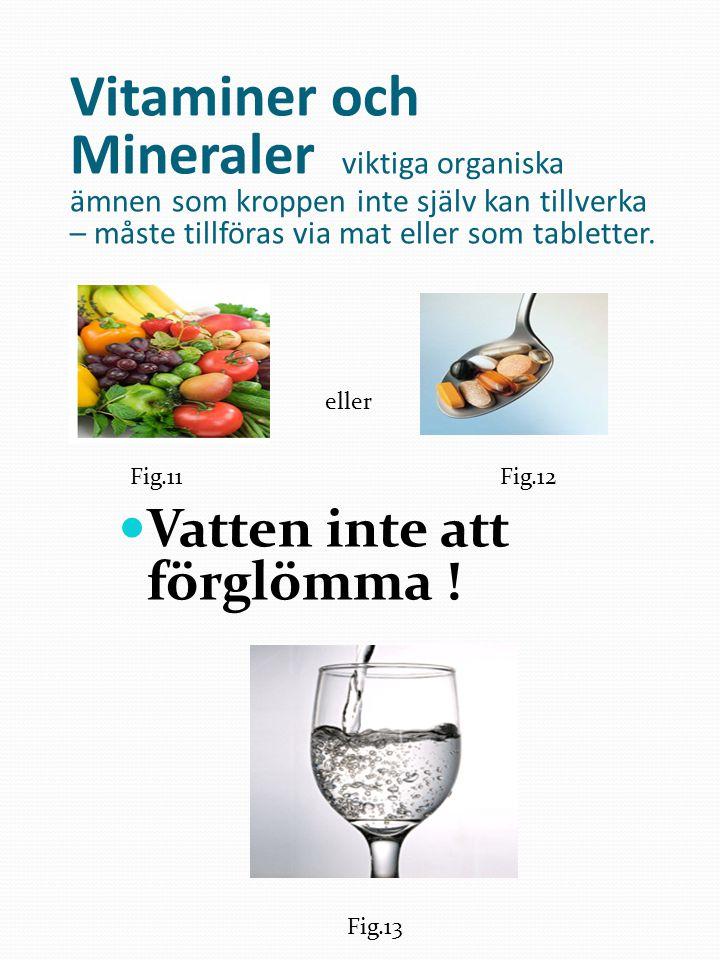Vitaminer och Mineraler viktiga organiska ämnen som kroppen inte själv kan tillverka – måste tillföras via mat eller som tabletter. Vatten inte att fö