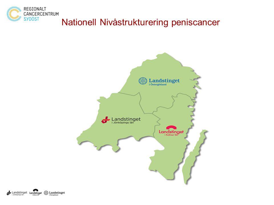 Nationell Nivåstrukturering peniscancer