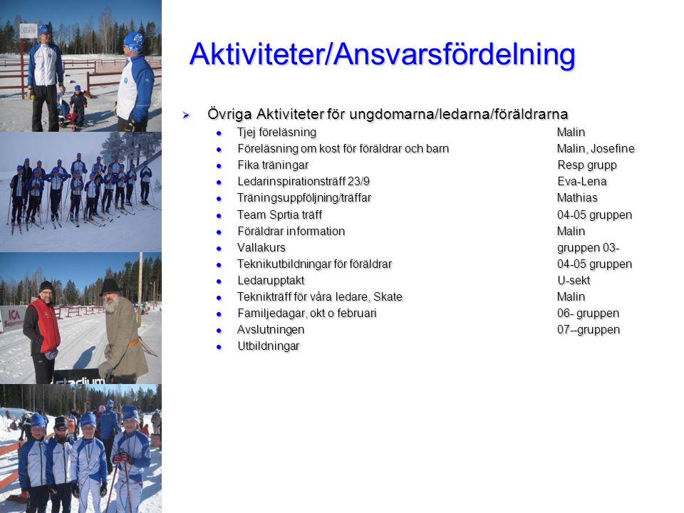 Aktiviteter/Ansvarsfördelning  Övriga Aktiviteter för ungdomarna/ledarna/föräldrarna Tjej föreläsningMalin Tjej föreläsningMalin Föreläsning om kost