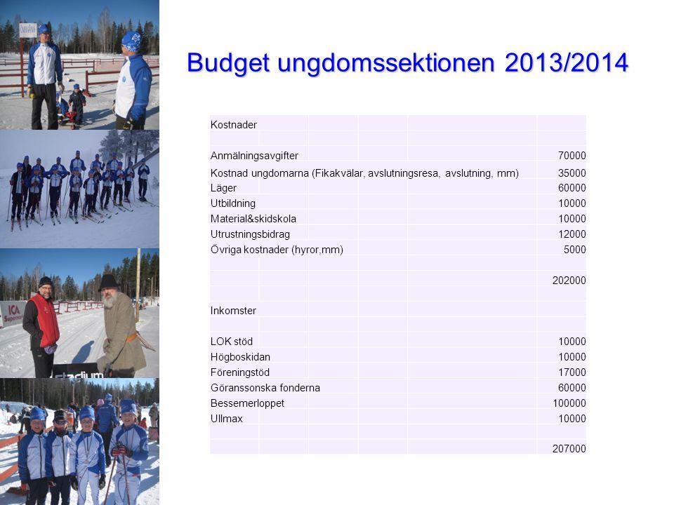 Budget ungdomssektionen 2013/2014 Kostnader Anmälningsavgifter70000 Kostnad ungdomarna (Fikakvälar, avslutningsresa, avslutning, mm)35000 Läger60000 U