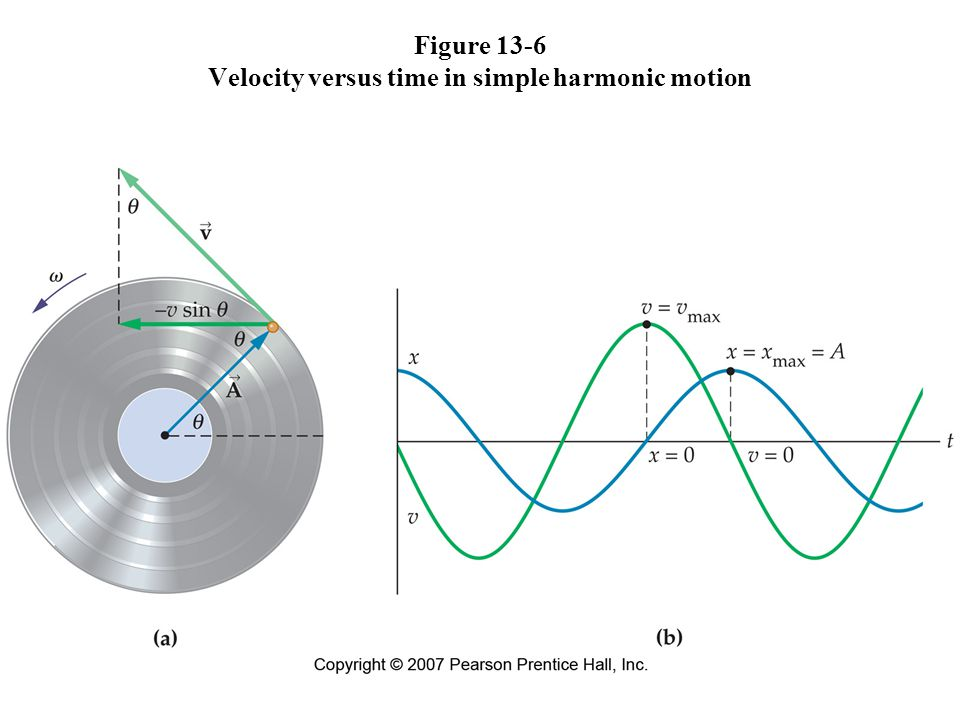 Figure 13-6 Velocity versus time in simple harmonic motion