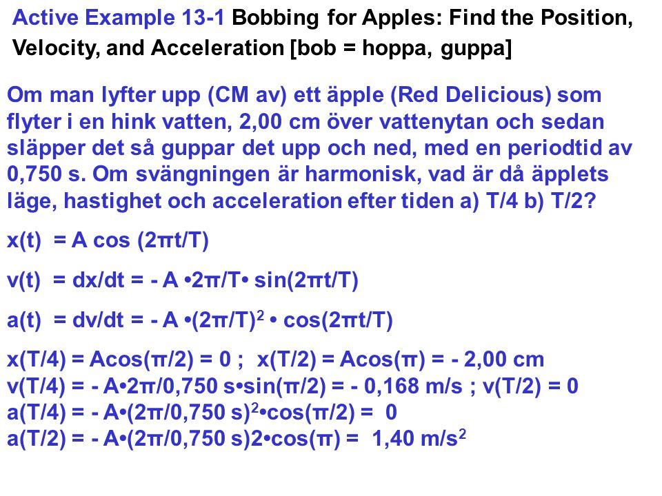 Active Example 13-1 Bobbing for Apples: Find the Position, Velocity, and Acceleration [bob = hoppa, guppa] Om man lyfter upp (CM av) ett äpple (Red De