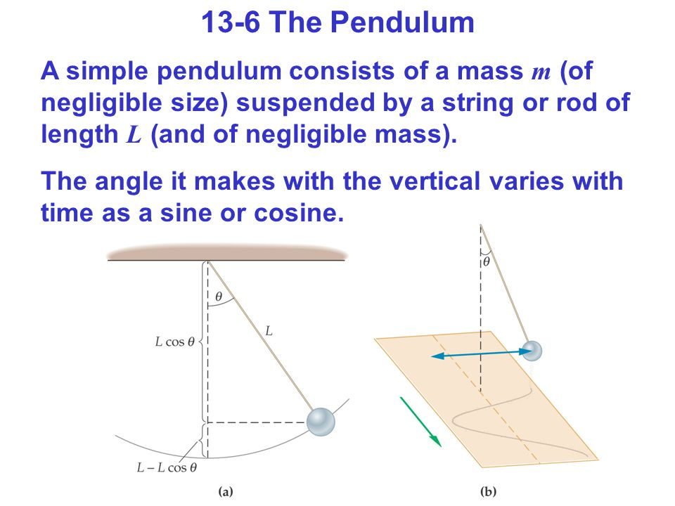 13-6 The Pendulum A simple pendulum consists of a mass m (of negligible size) suspended by a string or rod of length L (and of negligible mass).