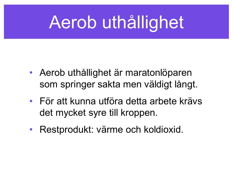 Aerob uthållighet Aerob uthållighet är maratonlöparen som springer sakta men väldigt långt. För att kunna utföra detta arbete krävs det mycket syre ti