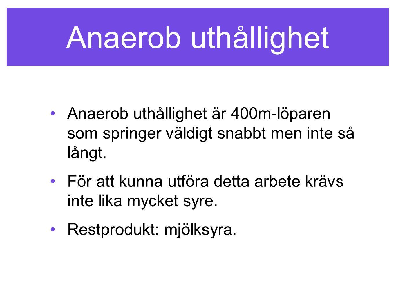 Anaerob uthållighet Anaerob uthållighet är 400m-löparen som springer väldigt snabbt men inte så långt. För att kunna utföra detta arbete krävs inte li