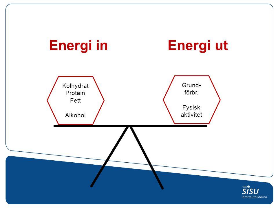 Energi in Energi ut Kolhydrat Protein Fett Alkohol Grund- förbr. Fysisk aktivitet