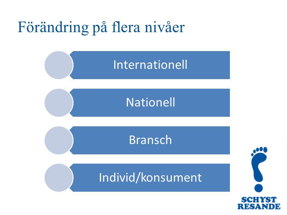 Förändring på flera nivåer Internationell Nationell Bransch Individ/konsument