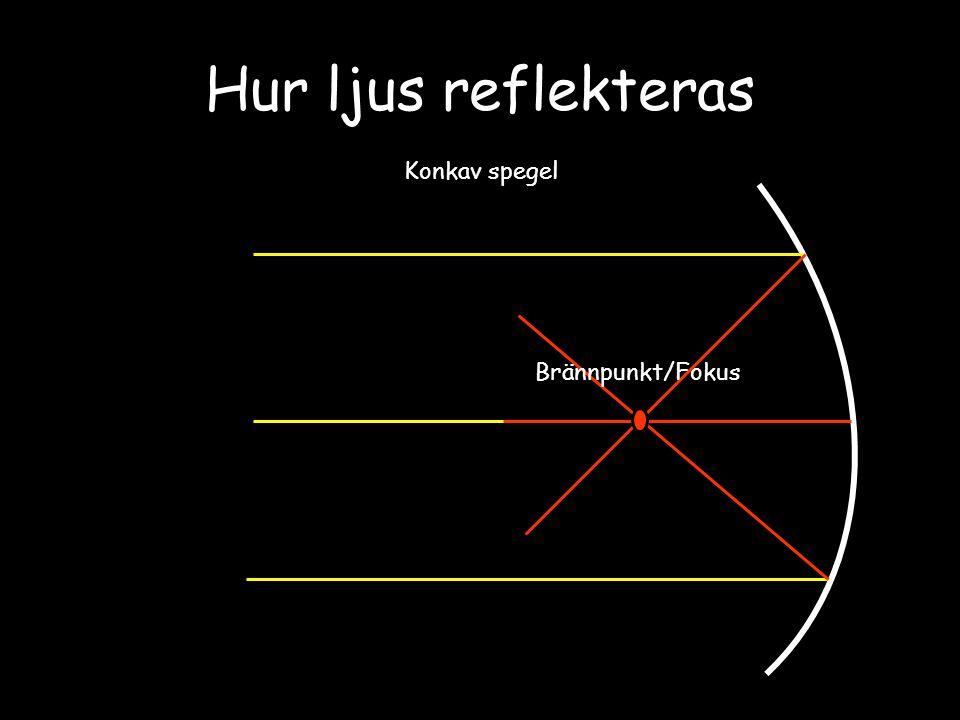 Hur ljus reflekteras Brännpunkt/Fokus Konkav spegel Ger förstorad bild och används exempelvis i sminkspeglar.