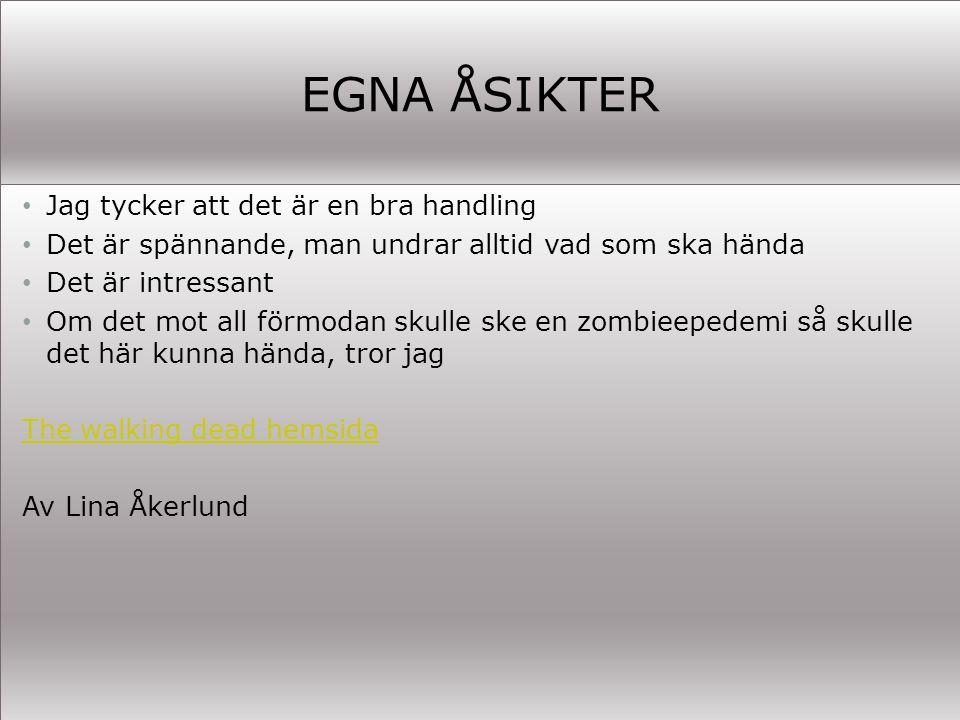 EGNA ÅSIKTER Jag tycker att det är en bra handling Det är spännande, man undrar alltid vad som ska hända Det är intressant Om det mot all förmodan skulle ske en zombieepedemi så skulle det här kunna hända, tror jag The walking dead hemsida Av Lina Åkerlund