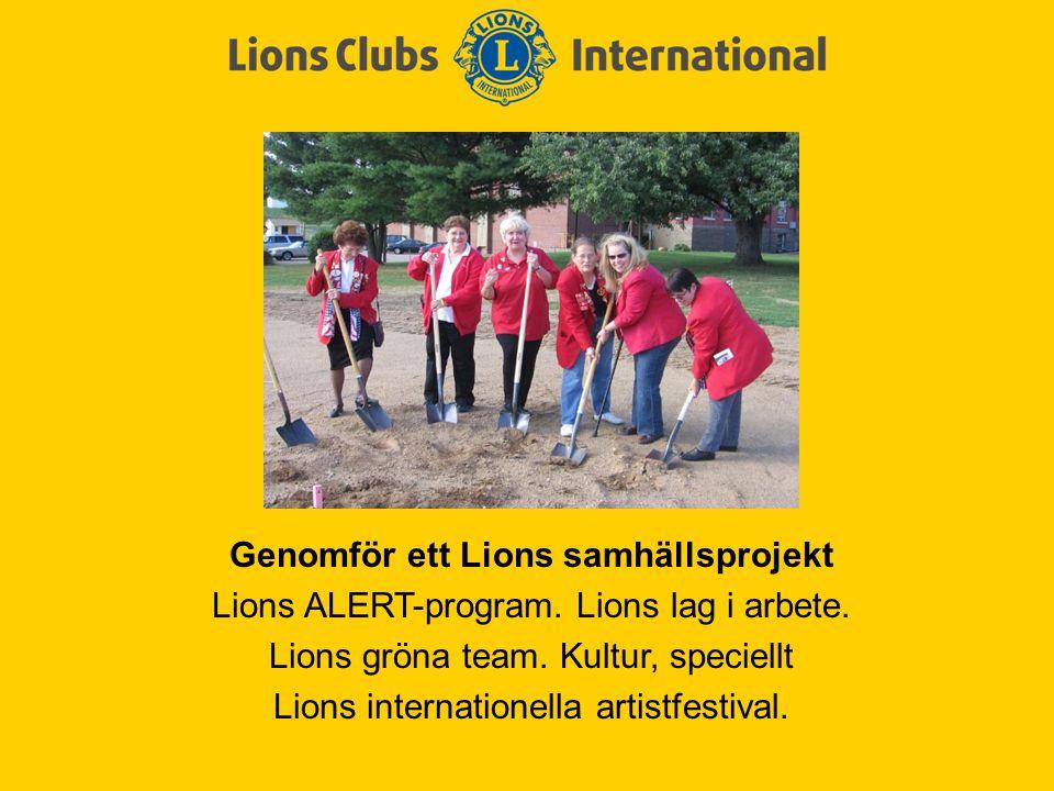 Genomför ett Lions samhällsprojekt Lions ALERT-program. Lions lag i arbete. Lions gröna team. Kultur, speciellt Lions internationella artistfestival.