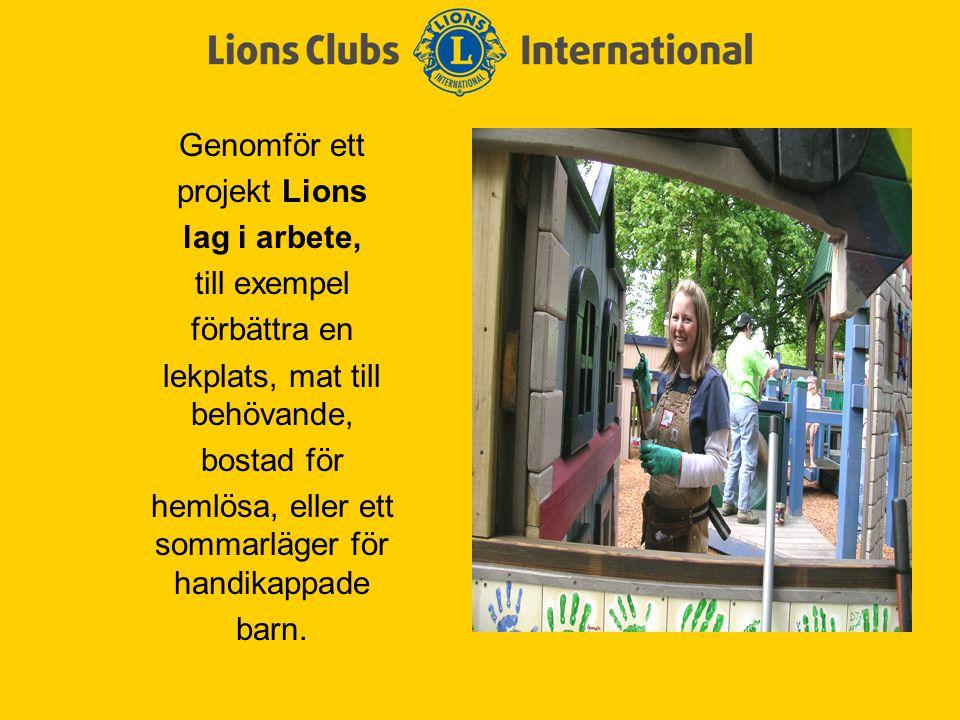 Genomför ett projekt Lions lag i arbete, till exempel förbättra en lekplats, mat till behövande, bostad för hemlösa, eller ett sommarläger för handikappade barn.