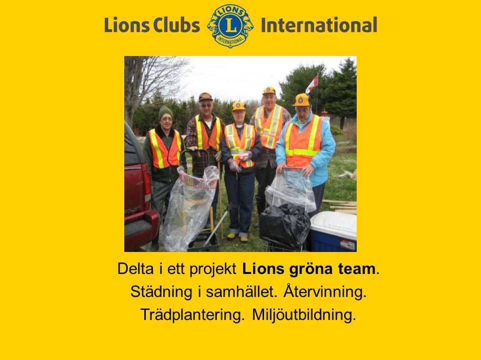Delta i ett projekt Lions gröna team. Städning i samhället. Återvinning. Trädplantering. Miljöutbildning.