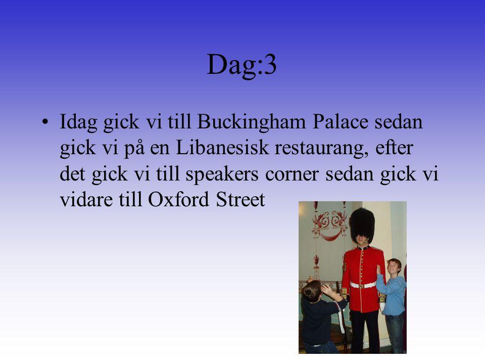 Dag:3 Idag gick vi till Buckingham Palace sedan gick vi på en Libanesisk restaurang, efter det gick vi till speakers corner sedan gick vi vidare till Oxford Street
