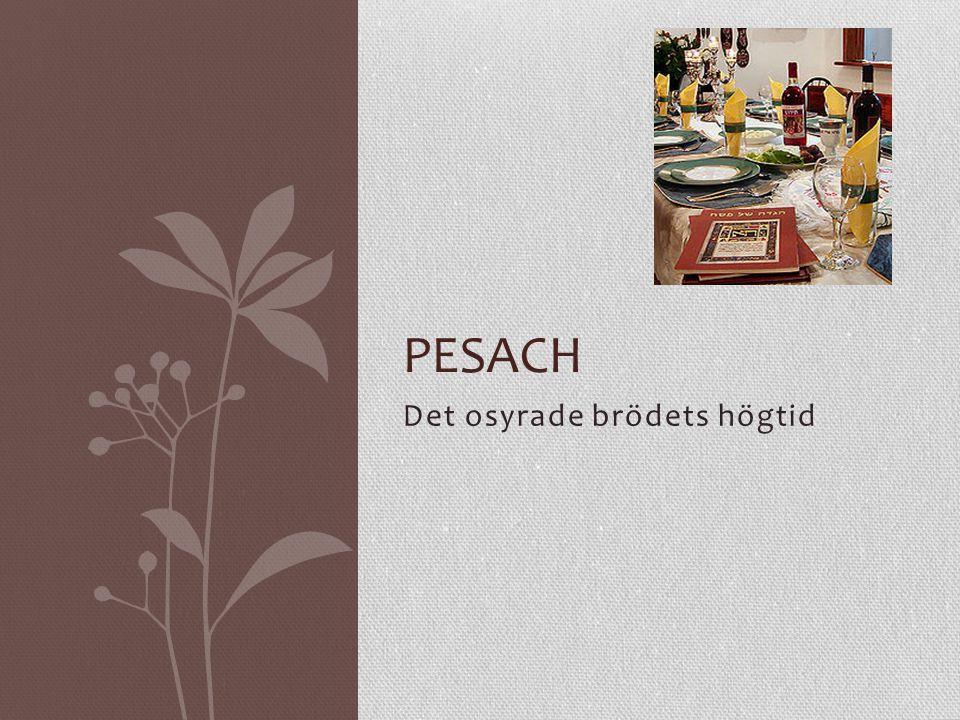 Varför firar man Pesach .