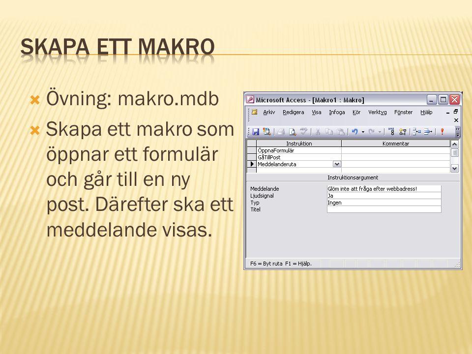  Övning: makro.mdb  Skapa ett makro som öppnar ett formulär och går till en ny post.