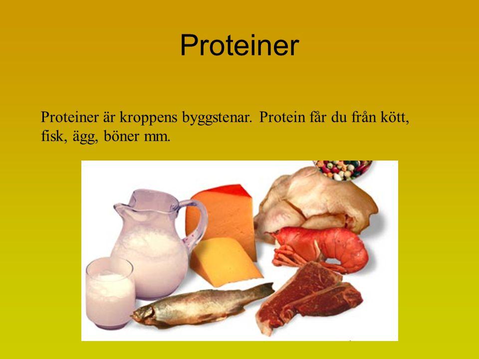 Proteiner Proteiner är kroppens byggstenar. Protein får du från kött, fisk, ägg, böner mm.