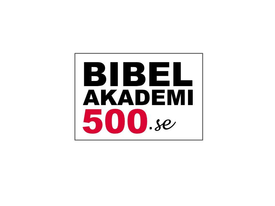 BIBEL AKADEMI 500.se