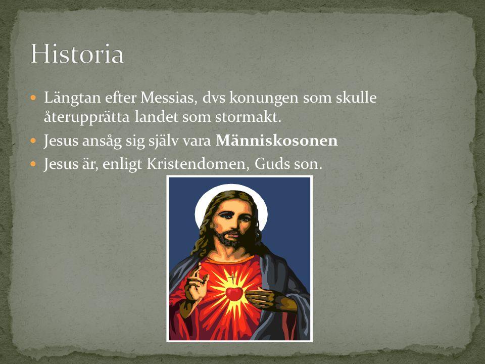 Längtan efter Messias, dvs konungen som skulle återupprätta landet som stormakt. Jesus ansåg sig själv vara Människosonen Jesus är, enligt Kristendome