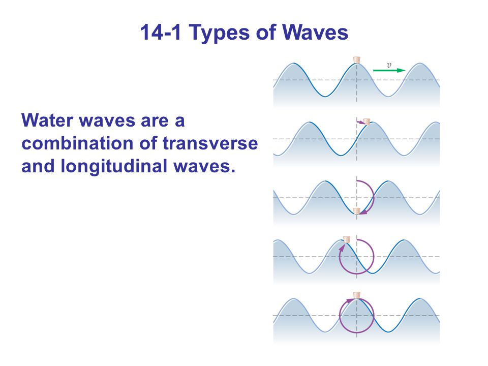 Summary of Chapter 14 A wave is a propagating disturbance.