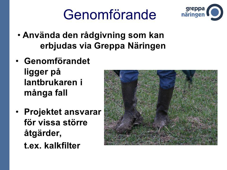 Genomförande Genomförandet ligger på lantbrukaren i många fall Projektet ansvarar för vissa större åtgärder, t.ex. kalkfilter Använda den rådgivning s