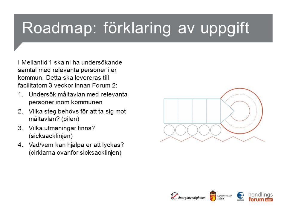 Roadmap: förklaring av uppgift I Mellantid 1 ska ni ha undersökande samtal med relevanta personer i er kommun.