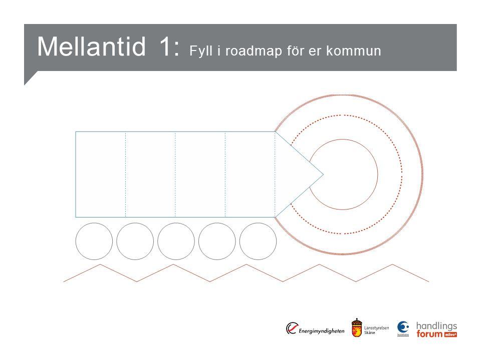 Mellantid 1: Fyll i roadmap för er kommun
