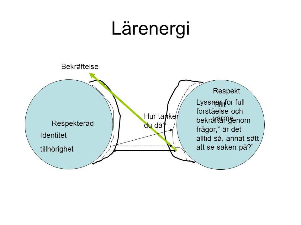 Lärenergi Tillit Respekt Bekräftelse Värme, närhet Tillhörighet KASAM Tillit Respekt Bekräftelse Värme, närhet Tillhörighet KASAM Öppet utforskande lärande av varandras förståelse utifrån erfarenheter och syn på uppdraget osv LÄRANDE SAMTAL