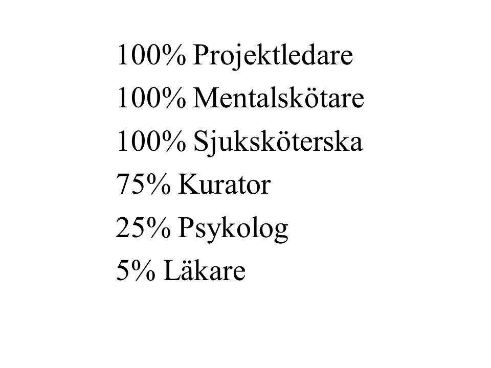 100% Projektledare 100% Mentalskötare 100% Sjuksköterska 75% Kurator 25% Psykolog 5% Läkare
