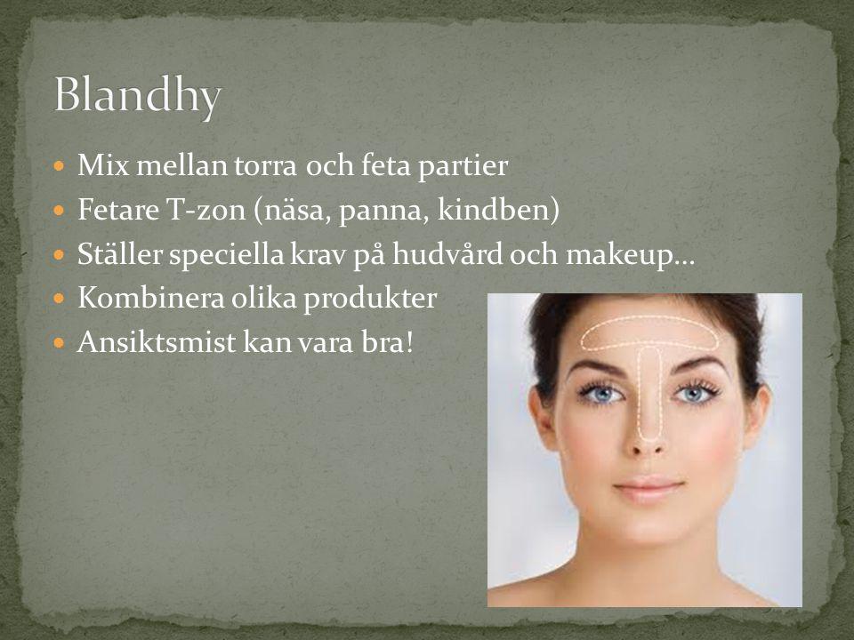 Mix mellan torra och feta partier Fetare T-zon (näsa, panna, kindben) Ställer speciella krav på hudvård och makeup… Kombinera olika produkter Ansiktsm