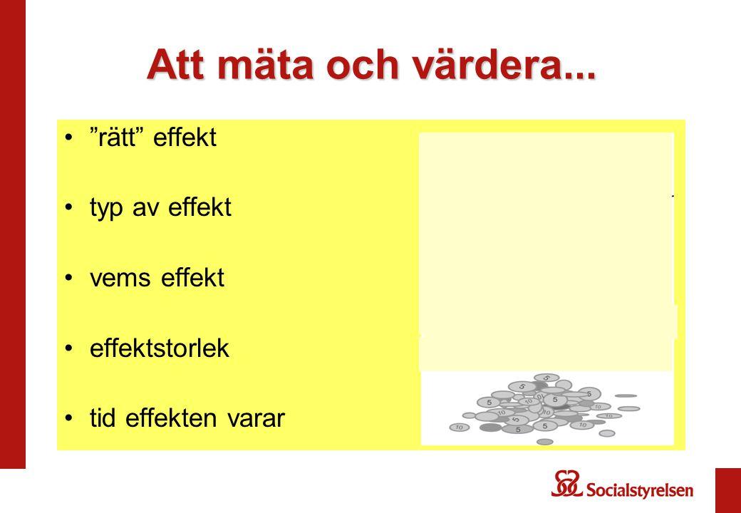 Att mäta och värdera... rätt effekt typ av effekt vems effekt effektstorlek tid effekten varar