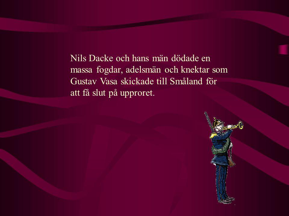 Nils Dacke var ledare för ett uppror i Småland. Bönderna var jätte sura på de höga skatterna.