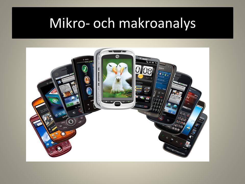 Mikro- och makroanalys