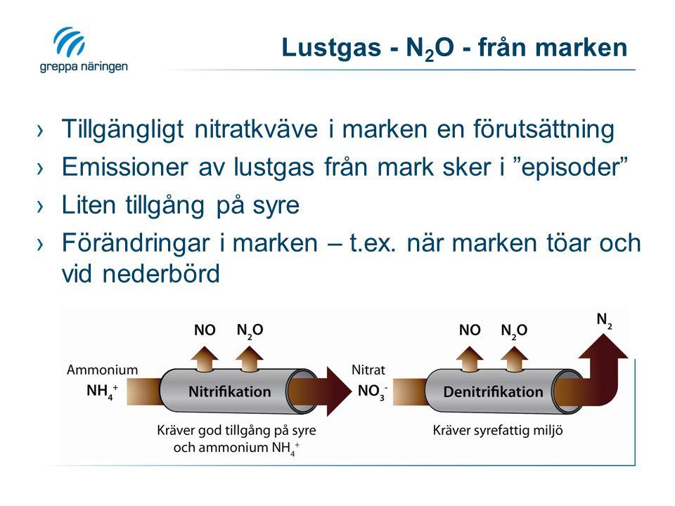 Lustgas - N 2 O - från marken ›Tillgängligt nitratkväve i marken en förutsättning ›Emissioner av lustgas från mark sker i episoder ›Liten tillgång på syre ›Förändringar i marken – t.ex.