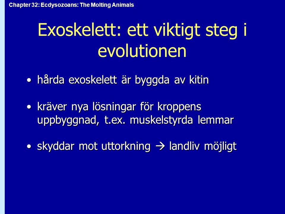 Chapter 32: Ecdysozoans: The Molting Animals Phylum Tardigrada, björndjur fuktiga habitat, t.ex.
