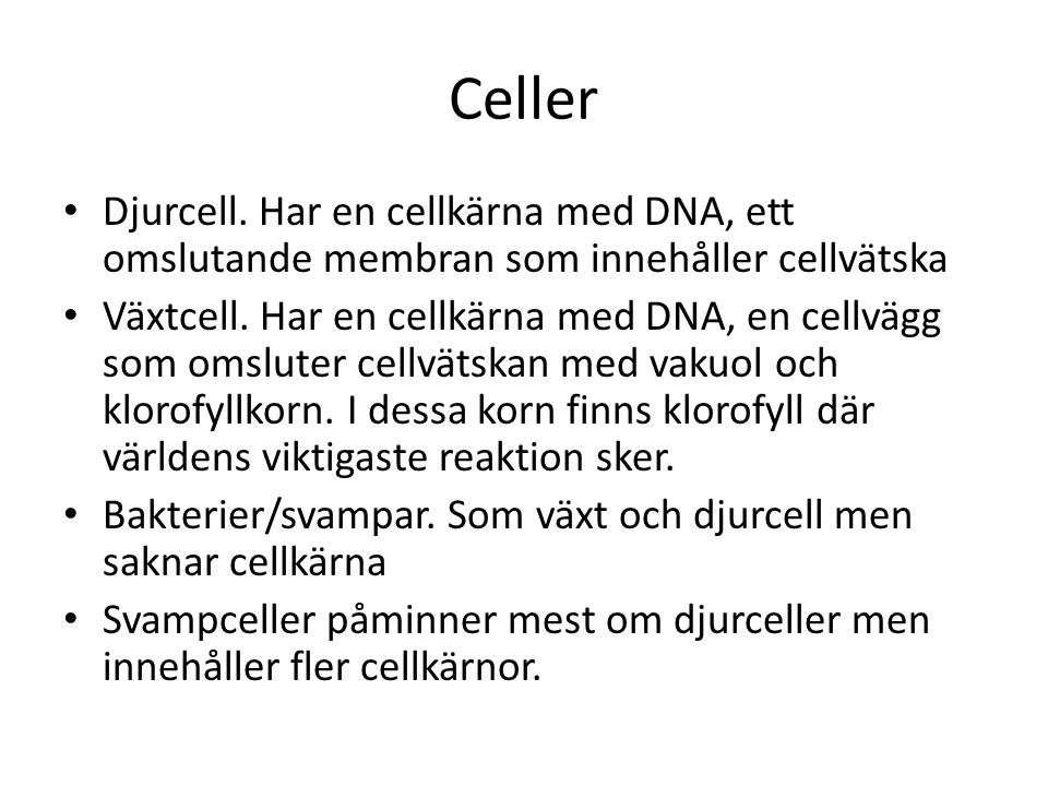 Celler Djurcell.