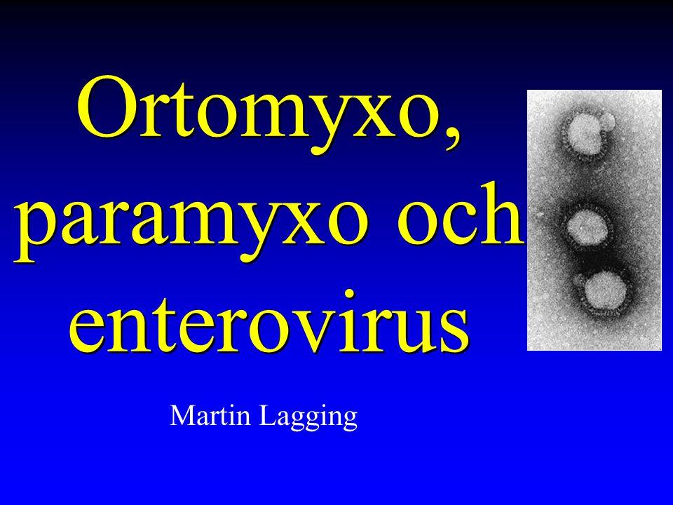 Ortomyxo, paramyxo och enterovirus Martin Lagging