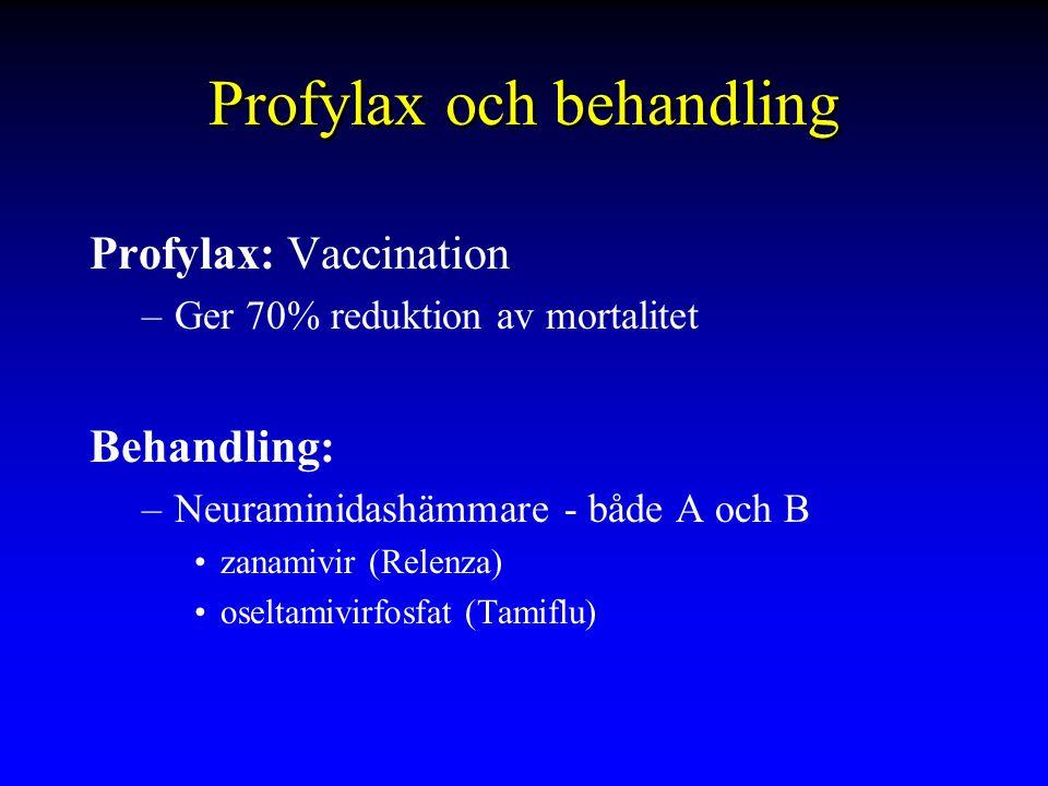 Profylax och behandling Profylax: Vaccination –Ger 70% reduktion av mortalitet Behandling: –Neuraminidashämmare - både A och B zanamivir (Relenza) oseltamivirfosfat (Tamiflu)