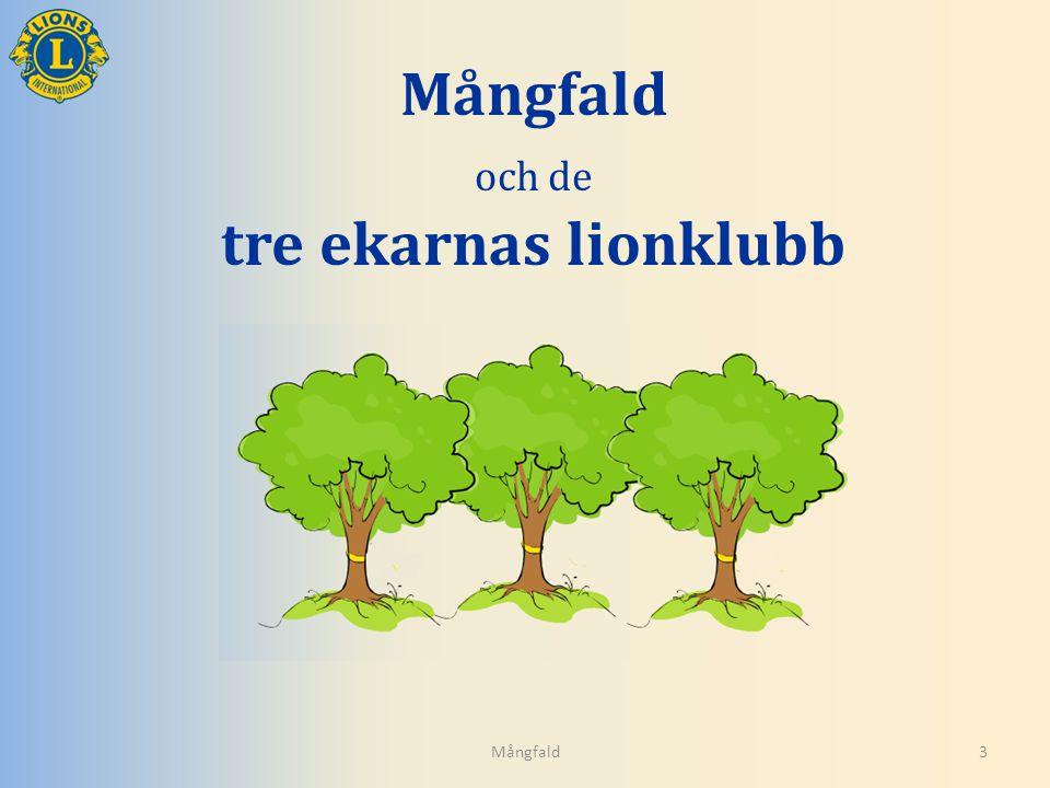 Mångfald och de tre ekarnas lionklubb Mångfald3