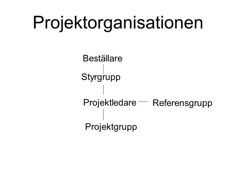 Beställare Styrgrupp Projektledare Referensgrupp Projektgrupp