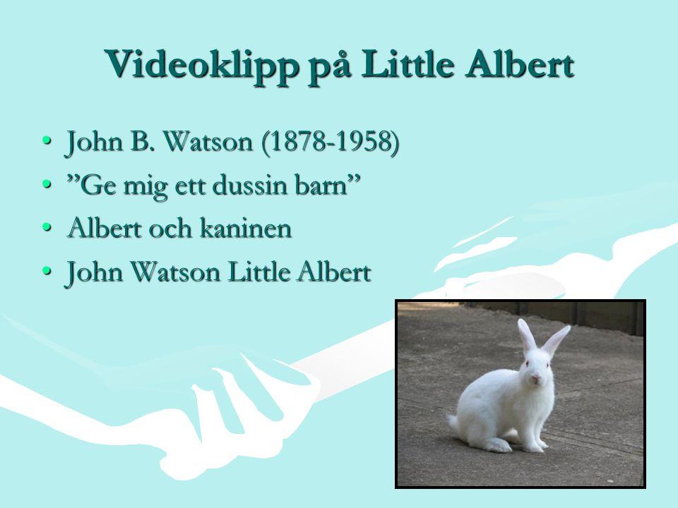 """Videoklipp på Little Albert John B. Watson (1878-1958)John B. Watson (1878-1958) """"Ge mig ett dussin barn""""""""Ge mig ett dussin barn"""" Albert och kaninenAl"""
