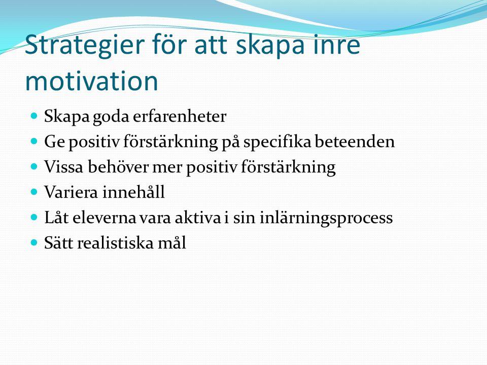 Strategier för att skapa inre motivation Skapa goda erfarenheter Ge positiv förstärkning på specifika beteenden Vissa behöver mer positiv förstärkning