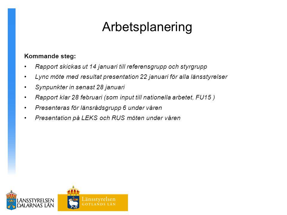 Arbetsplanering Kommande steg: Rapport skickas ut 14 januari till referensgrupp och styrgrupp Lync möte med resultat presentation 22 januari för alla