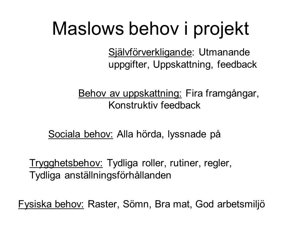 Maslows behov i projekt Självförverkligande: Utmanande uppgifter, Uppskattning, feedback Behov av uppskattning: Fira framgångar, Konstruktiv feedback
