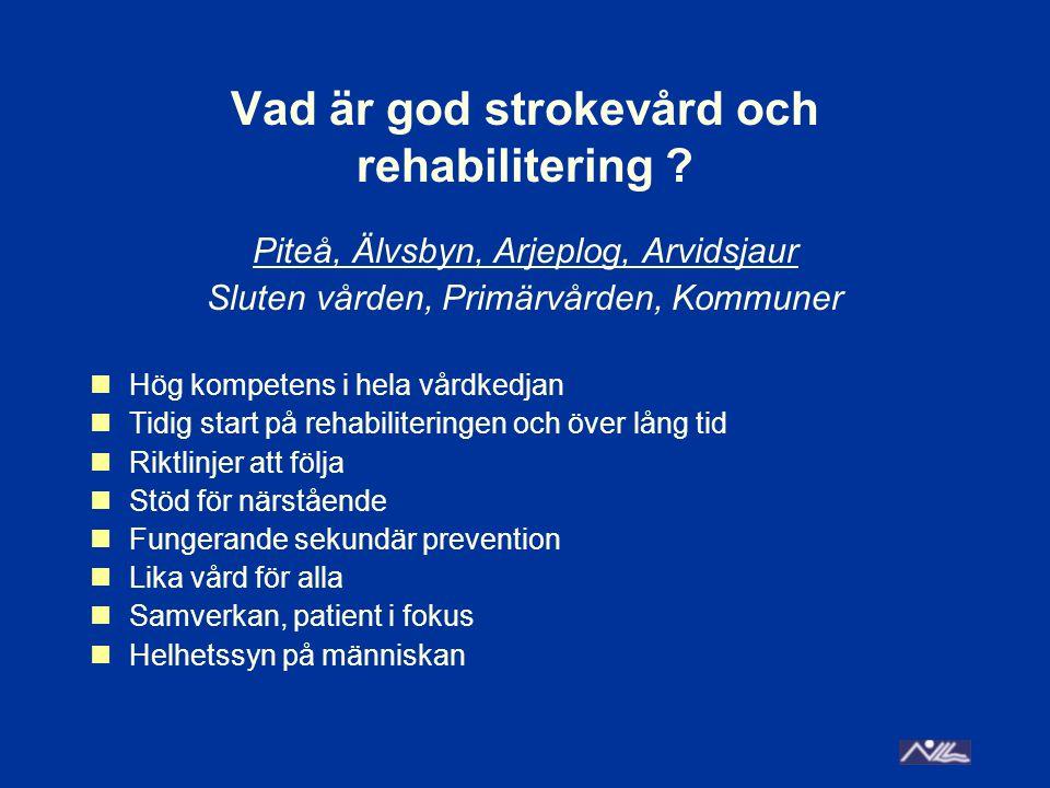 Vad är god strokevård och rehabilitering .