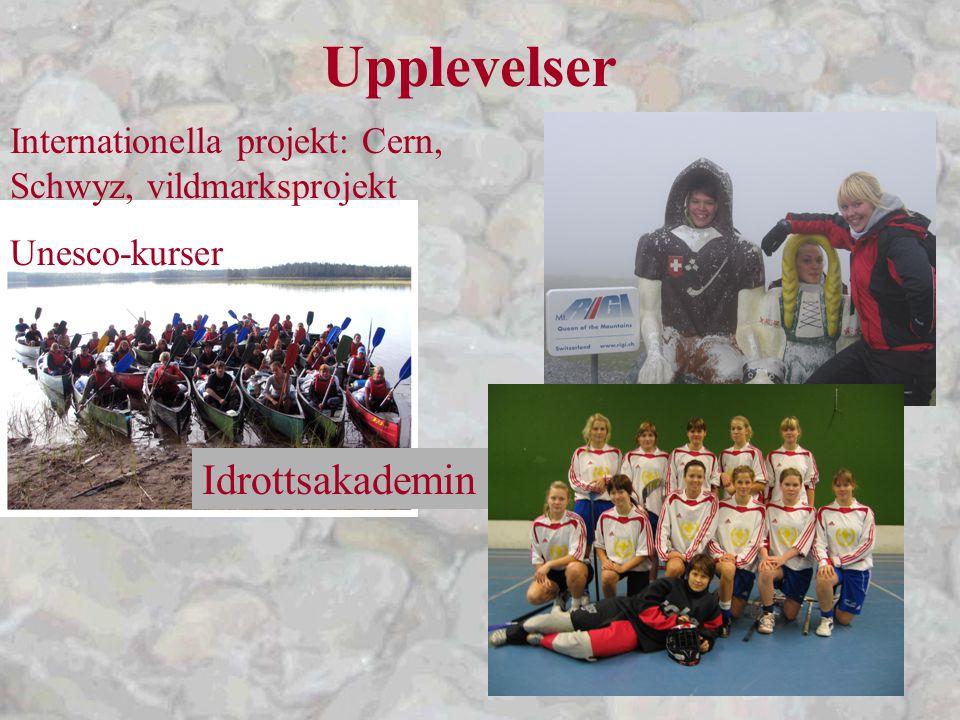 Upplevelser Internationella projekt: Cern, Schwyz, vildmarksprojekt Unesco-kurser Idrottsakademin