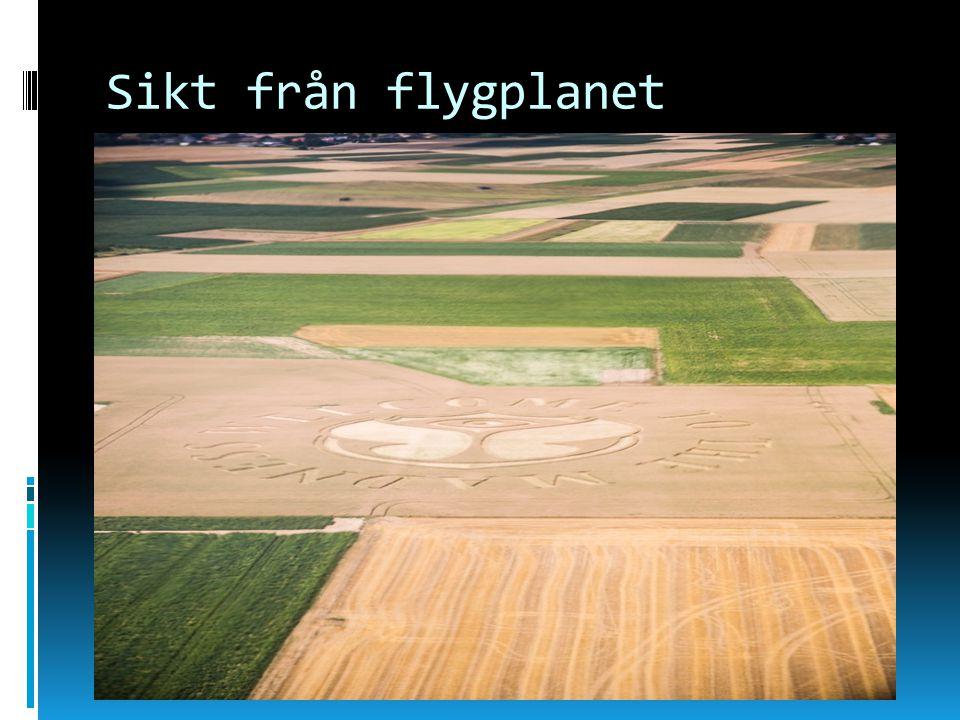 Sikt från flygplanet