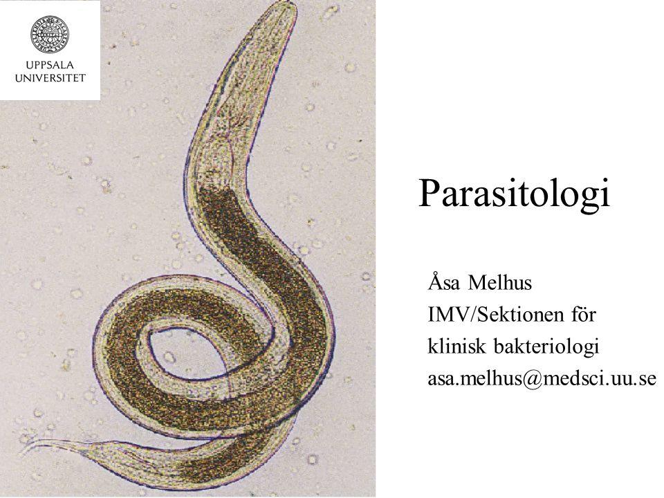 Parasitologi Åsa Melhus IMV/Sektionen för klinisk bakteriologi asa.melhus@medsci.uu.se