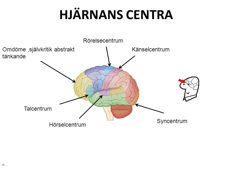 HJÄRNANS CENTRA Omdöme,självkritik abstrakt tänkande Talcentrum Hörselcentrum Rörelsecentrum Känselcentrum Syncentrum ET……